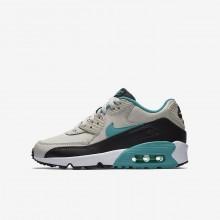 Nike Air Max 90 Lifestyle Shoes Boys Light Bone/Black/White/Sport Turquoise (213AFILV)