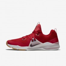 Nike Zoom Train Command Training Shoes For Men Gym Red/Vast Grey/Gum Medium Brown/Deep Burgundy (356YAPMK)