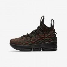 Nike LeBron 15 Basketball Shoes For Boys Multi-Color/Black (471SXMFL)