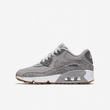 Nike Air Max 90 Lifestyle Shoes For Girls Atmosphere Grey/White/Gum Light Brown/Gunsmoke (821CZIRH)