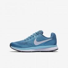 Nike Zoom Pegasus Hardloopschoenen Meisjes Groen/Wit (950CGIDV)