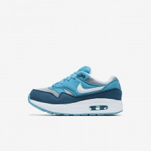 Nike Air Max 1 Lifestyle Shoes For Boys Wolf Grey/Light Blue Fury/Blue Force/White (958FAGRH)