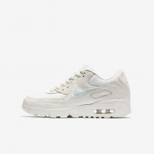 Nike Air Max 90 Lifestyle Shoes For Girls Sail/Igloo (993HRTNZ)